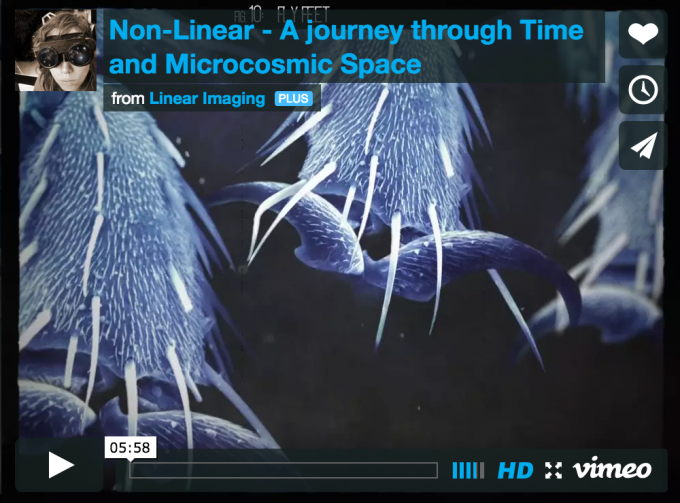 The Non Linear Video Project